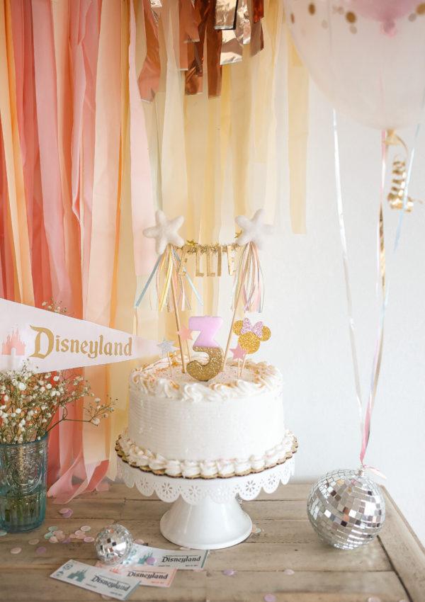 Ellie's Disneyland Birthday Party